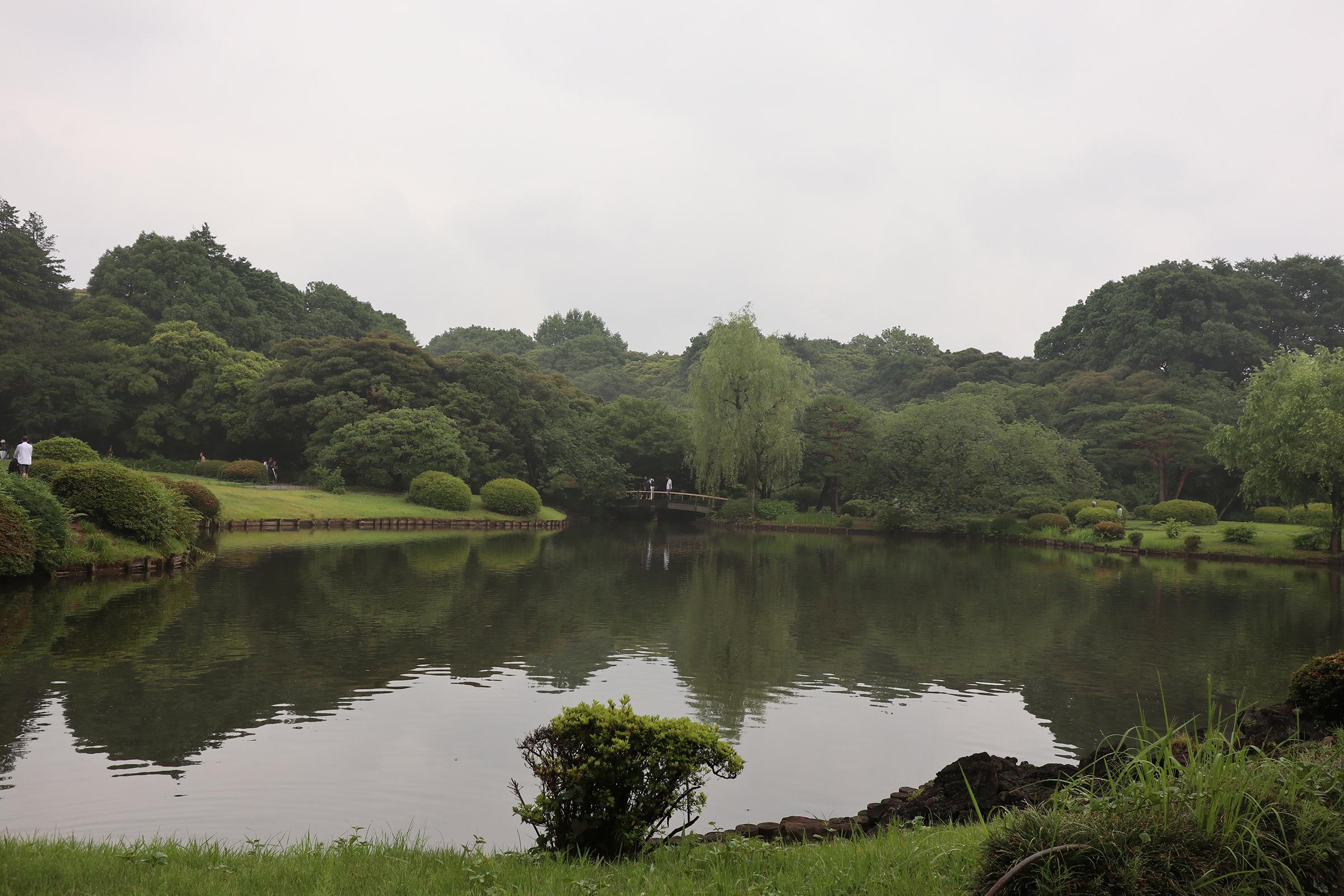 Canon EOS M5 @新宿御苑 -画像08
