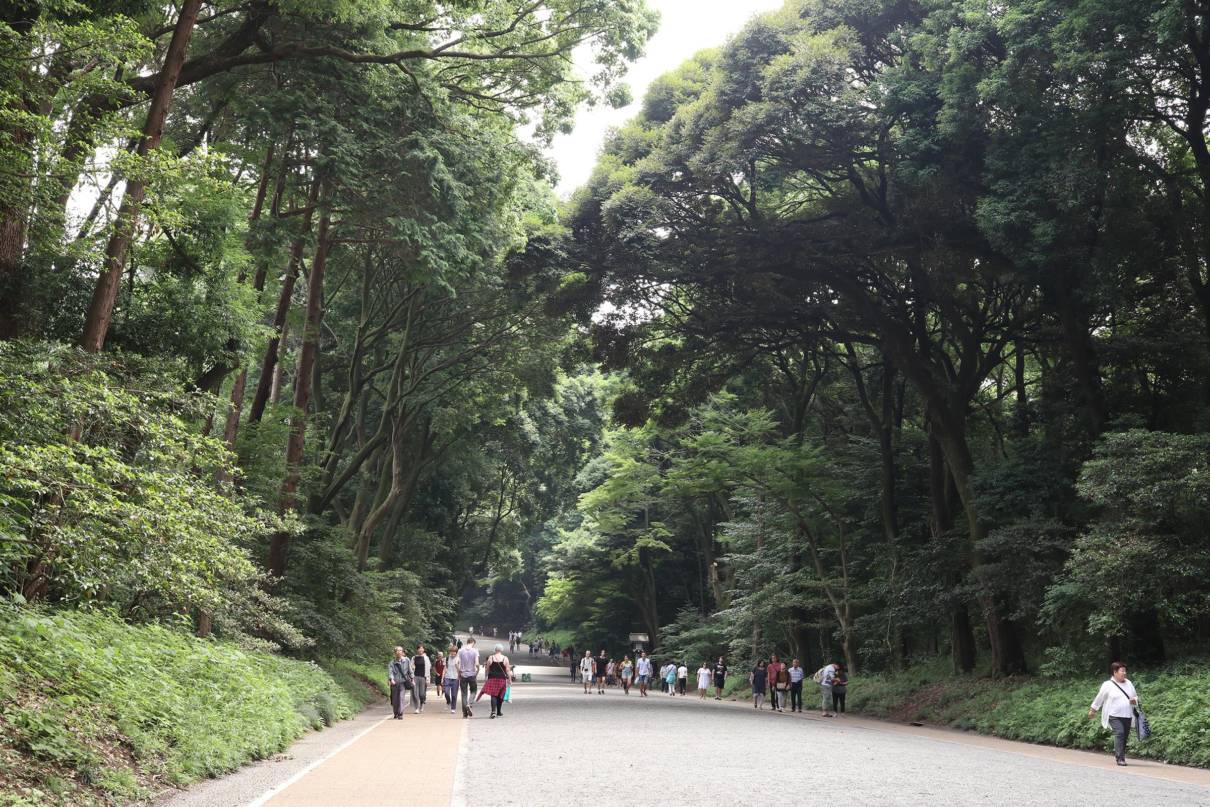 Canon EOS M5 @明治神宮 -画像05