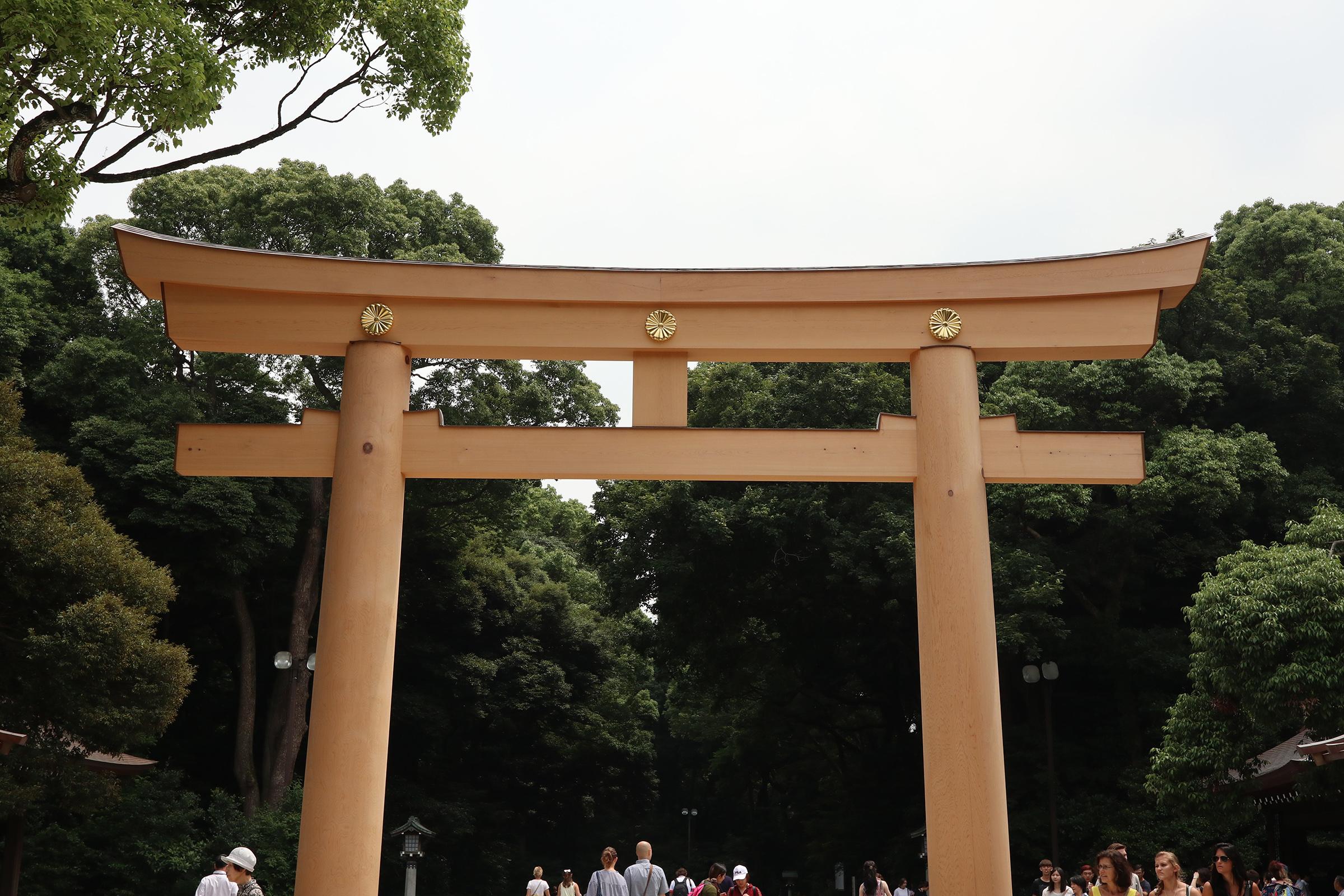 Canon EOS M5 @明治神宮 -画像10