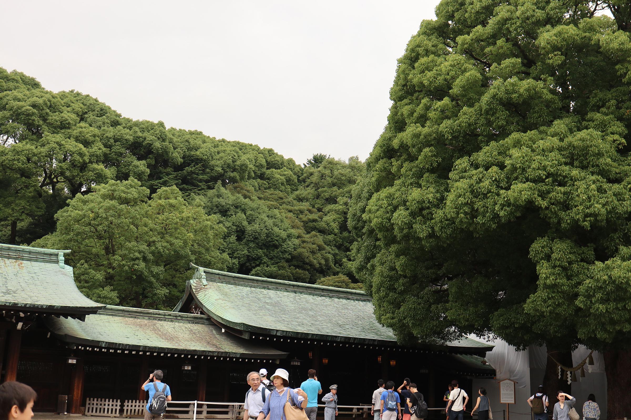 Canon EOS M5 @明治神宮 -画像17