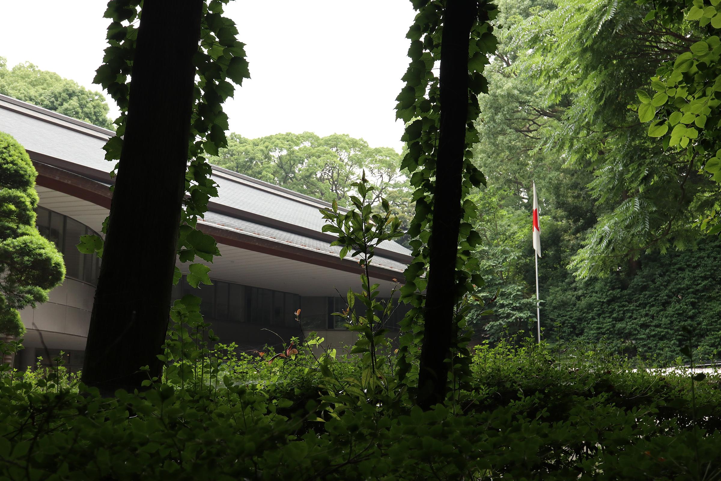 Canon EOS M5 @明治神宮 -画像19
