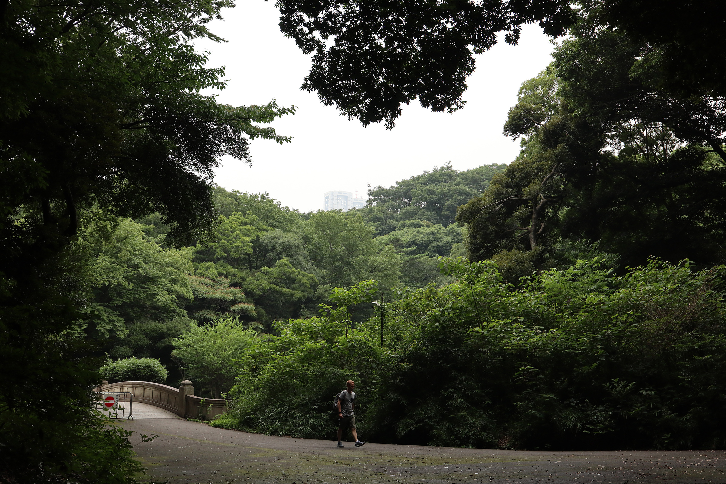 Canon EOS M5 @明治神宮 -画像23