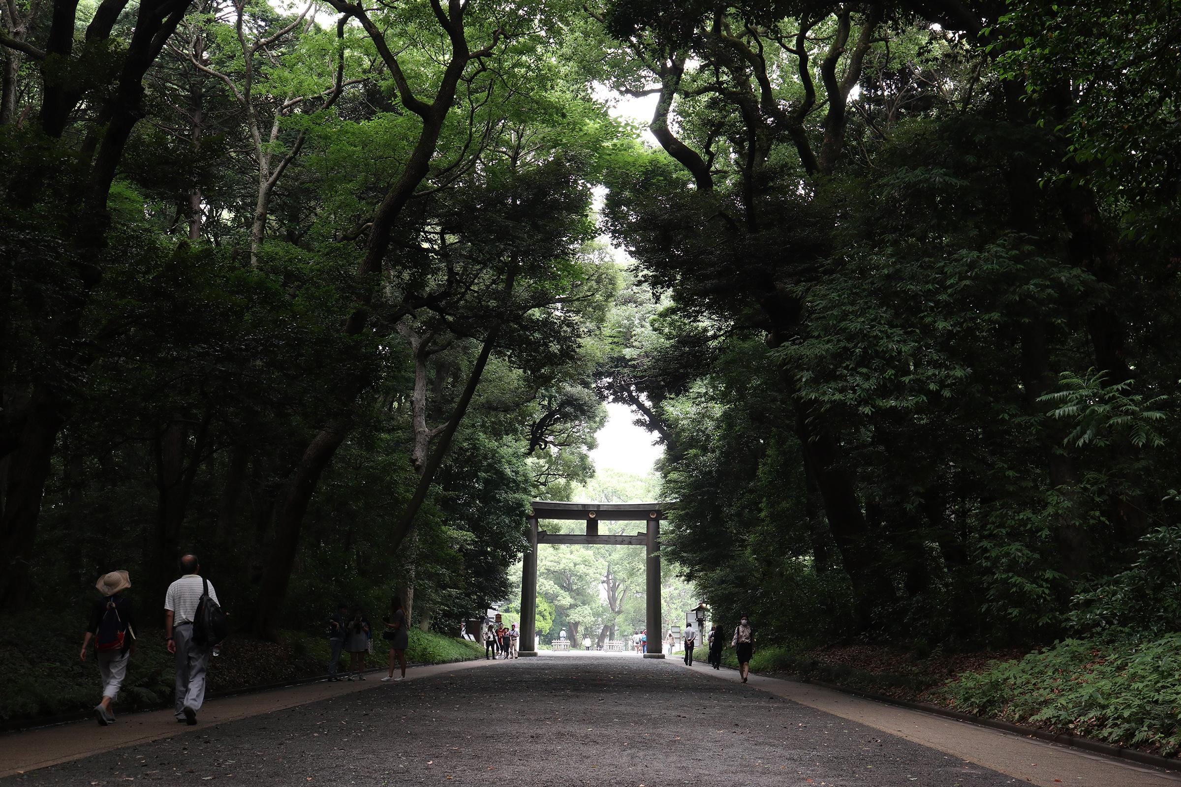 Canon EOS M5 @明治神宮 -画像34